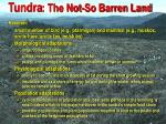 tundra the not so barren land68