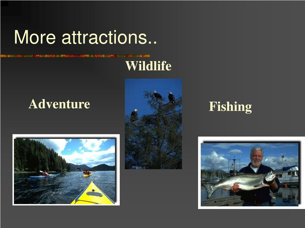 More attractions..