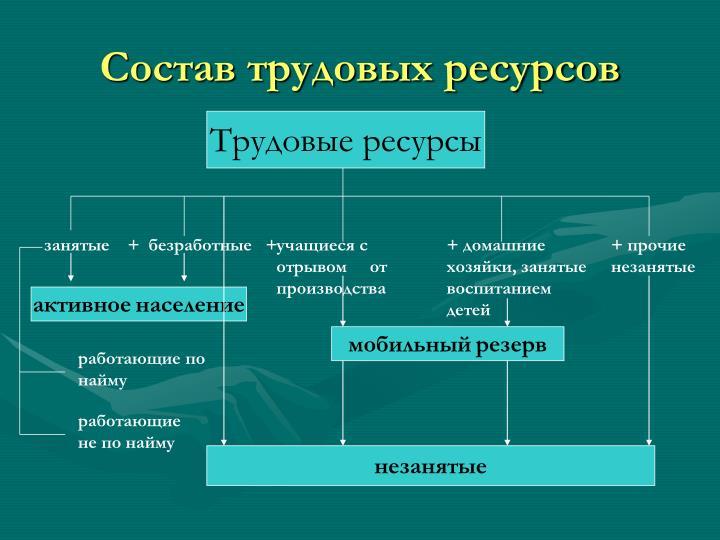 Состав трудовых ресурсов