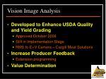 vision image analysis