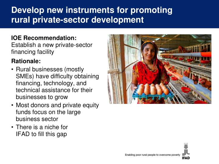 Develop new instruments for promoting rural private-sector development