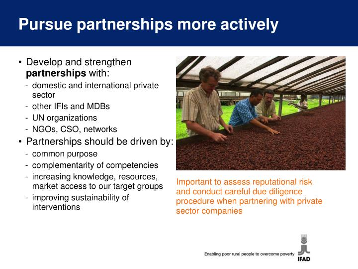 Pursue partnerships more actively