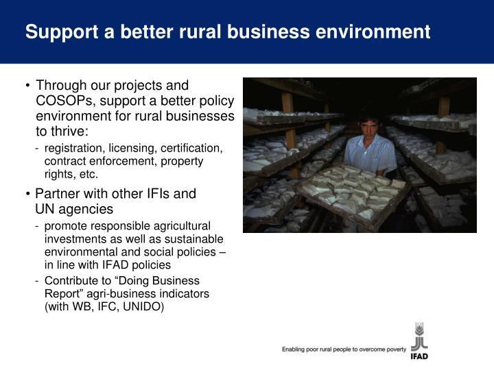 Support a better rural business environment