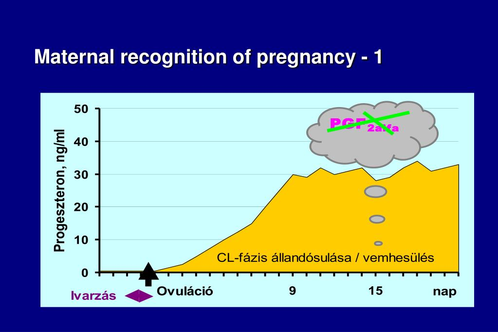 Maternal recognition of pregnancy - 1