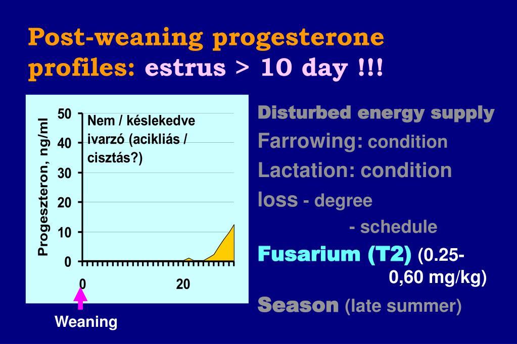 Post-weaning progesterone profiles: