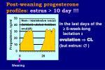post weaning progesterone profiles estrus 10 day42