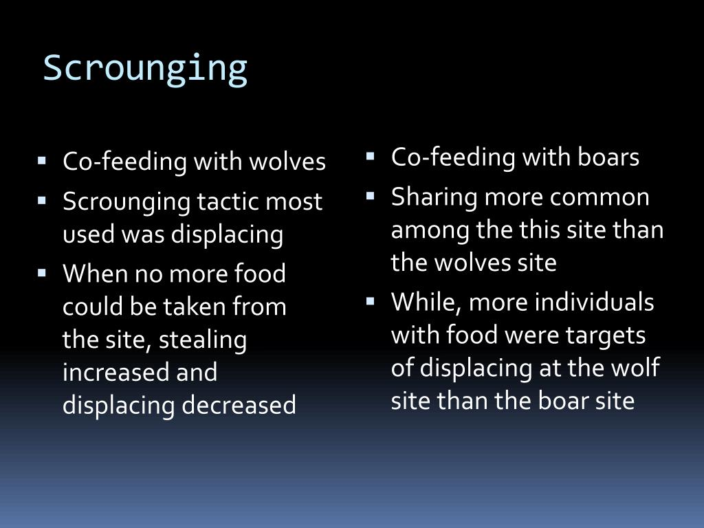 Scrounging
