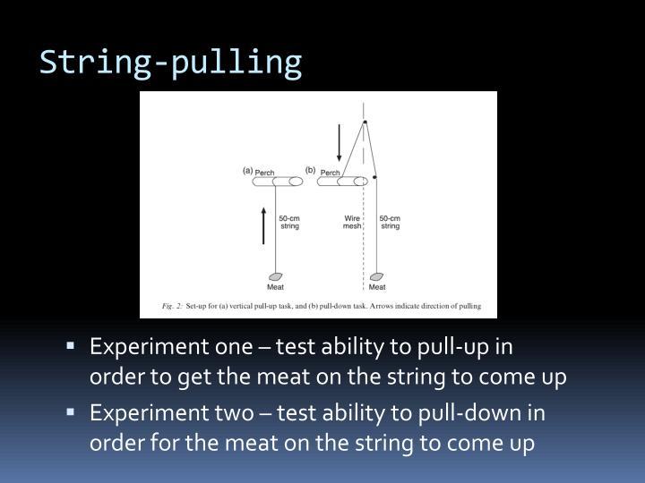 String pulling