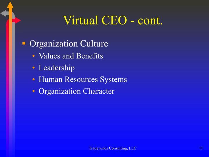 Virtual CEO - cont.