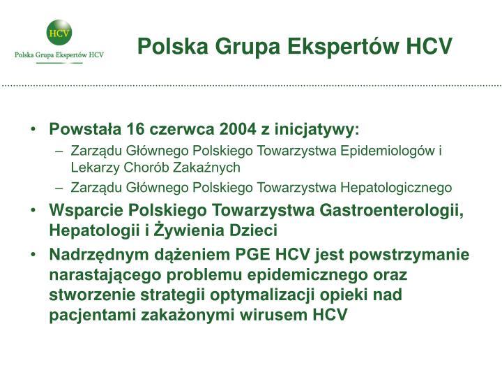 Polska grupa ekspert w hcv