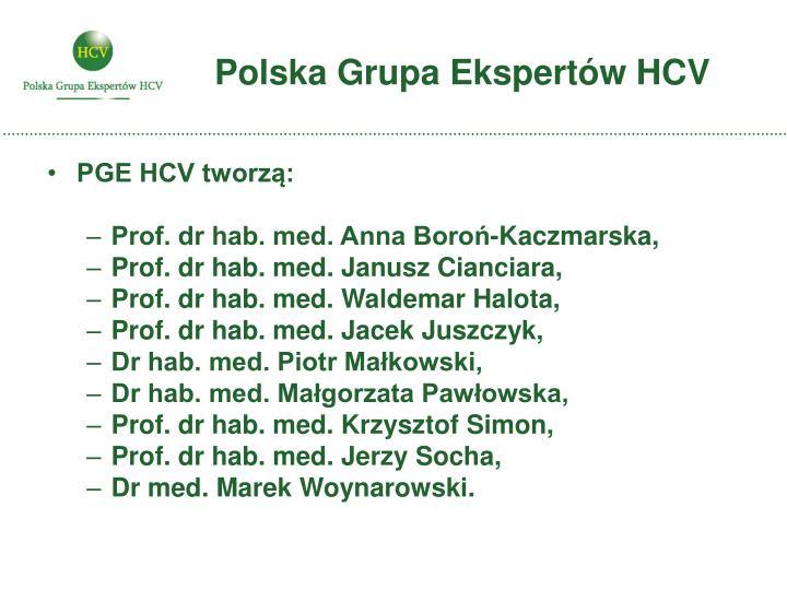 Polska grupa ekspert w hcv1