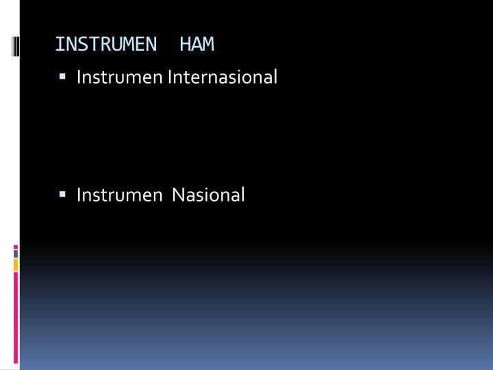INSTRUMEN  HAM