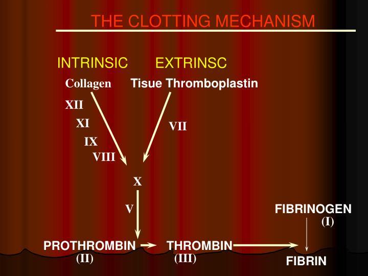 THE CLOTTING MECHANISM
