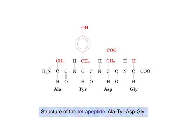 Structure of the