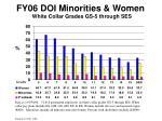 fy06 doi minorities women