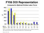 fy06 doi representation