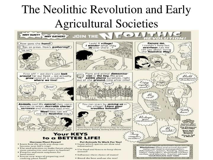 the effects of food production in the neolithic revolution