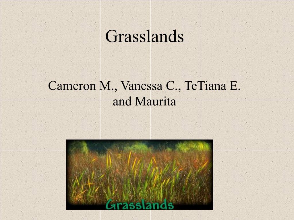 grasslands l.