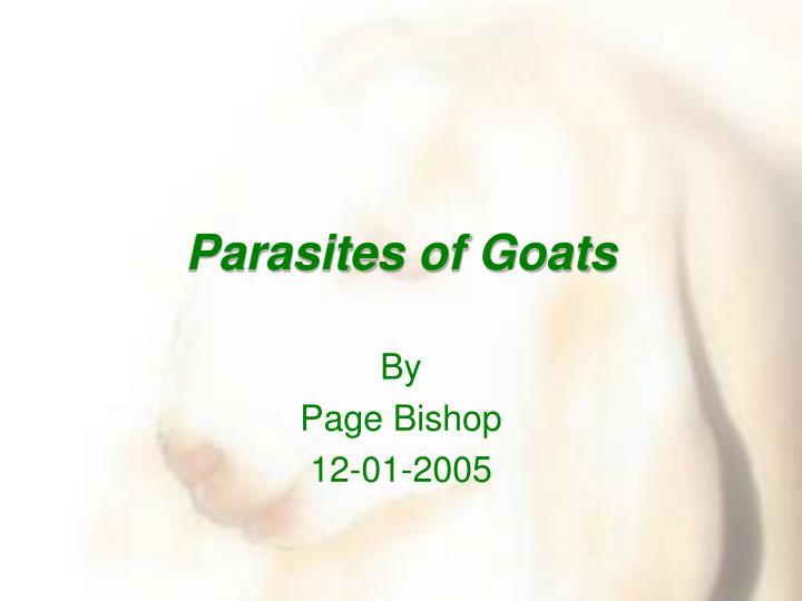 PPT - Parasites of Goats PowerPoint Presentation, free