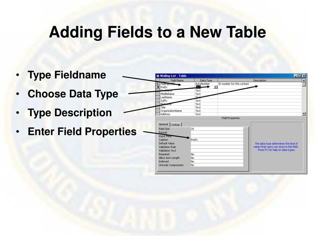 Adding Fields to a New Table