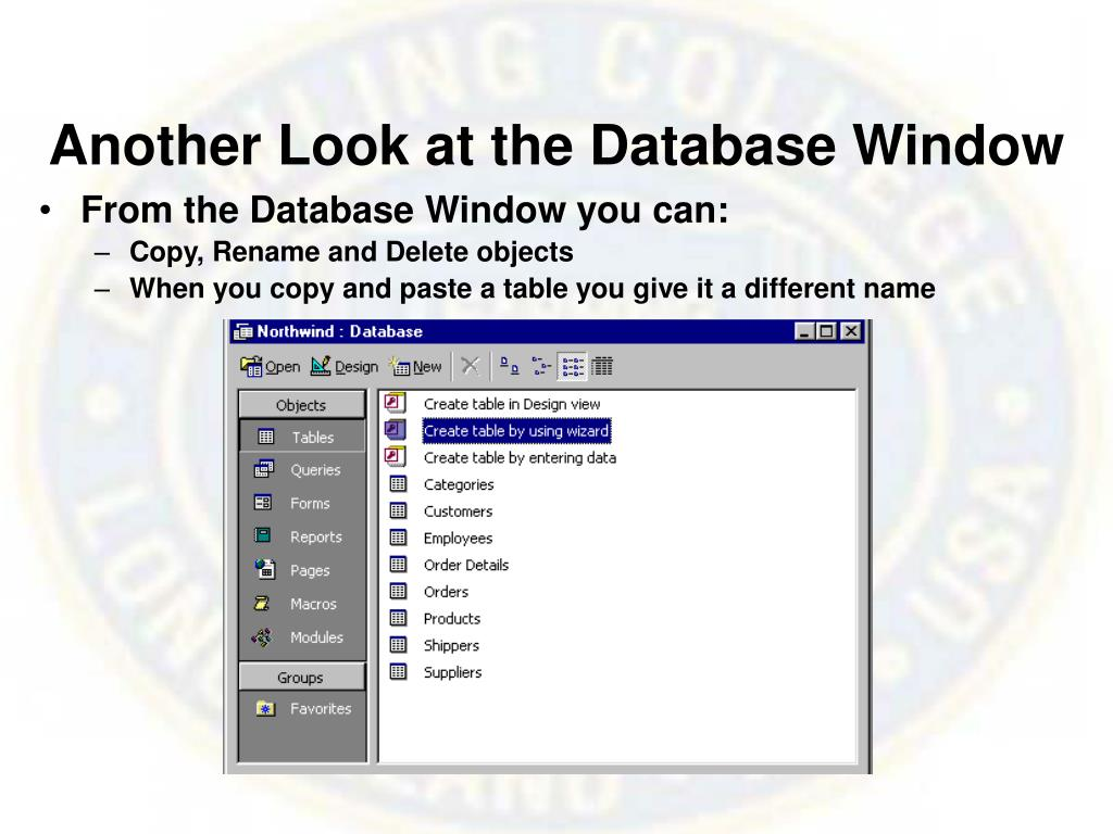 Another Look at the Database Window