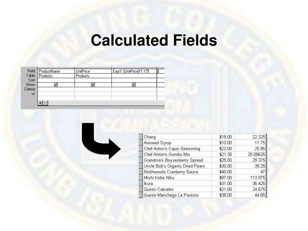 Calculated Fields