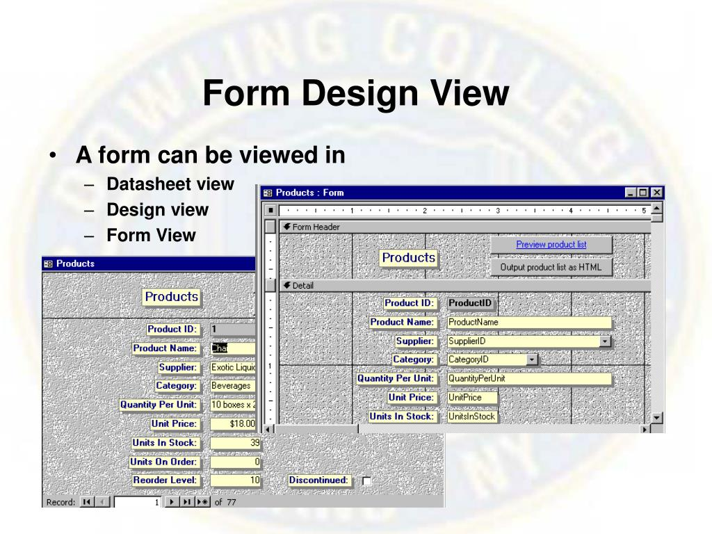 Form Design View