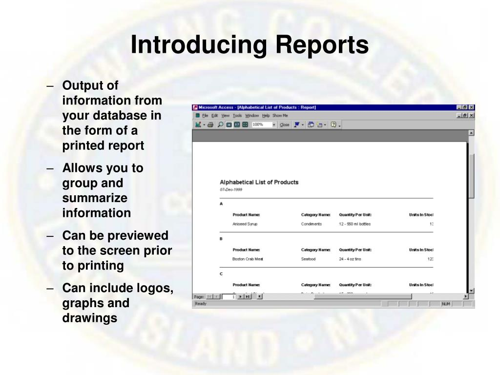 Introducing Reports