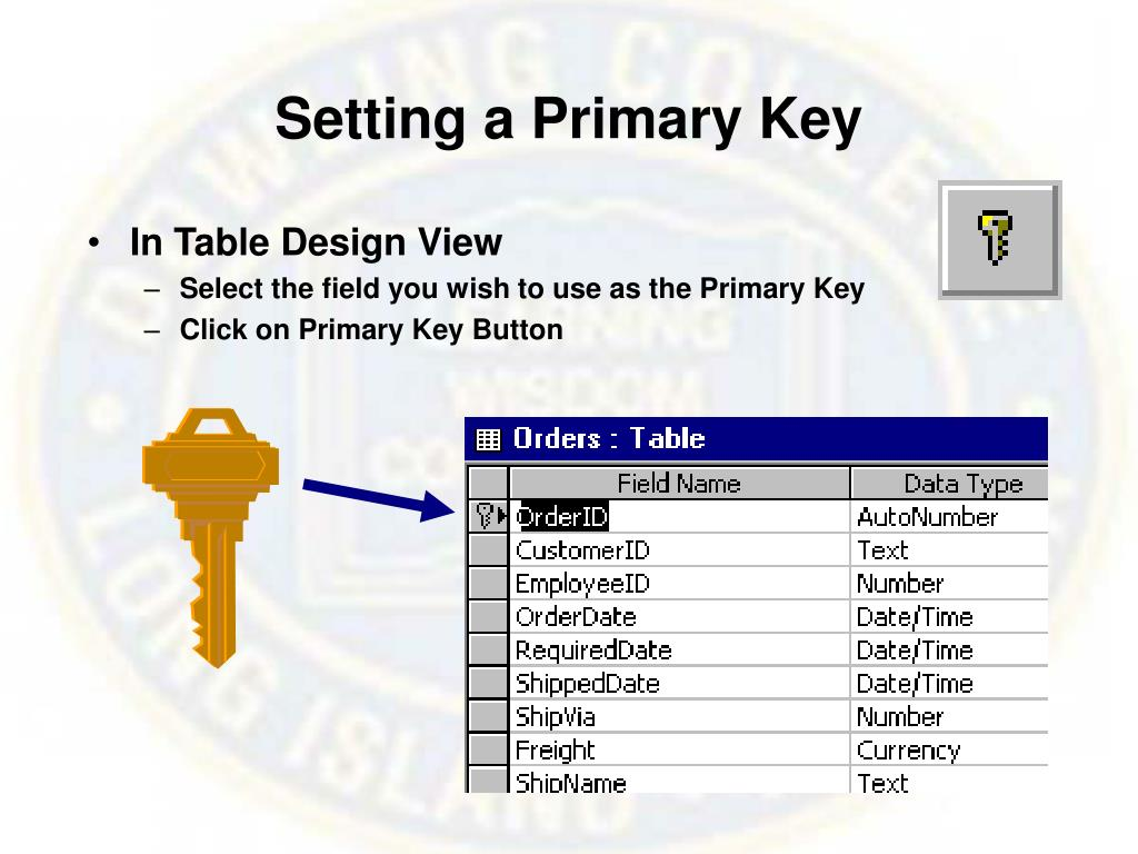 Setting a Primary Key