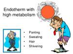 endotherm with high metabolism