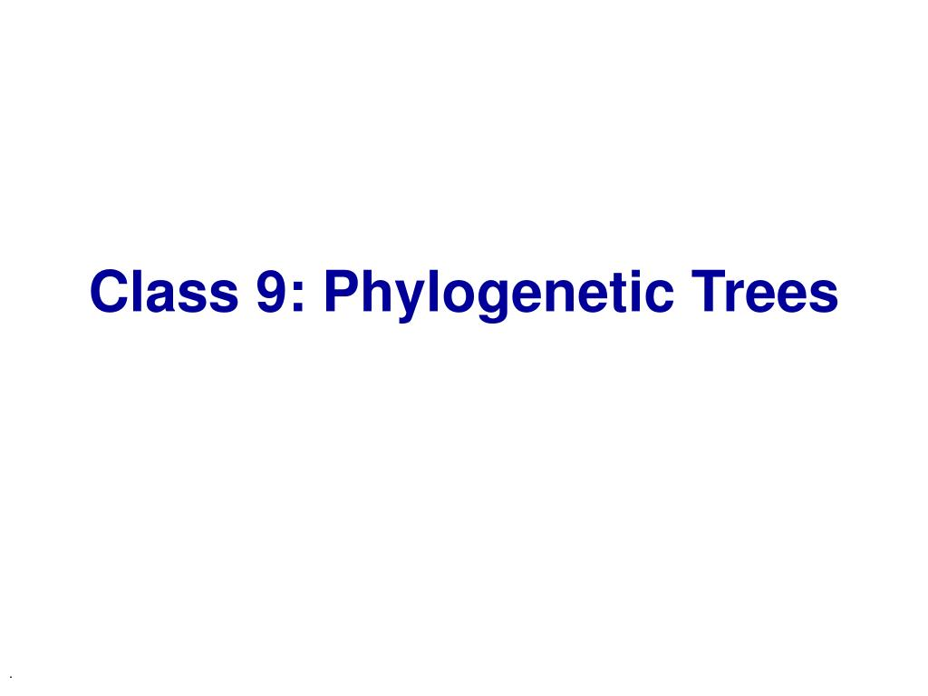 class 9 phylogenetic trees