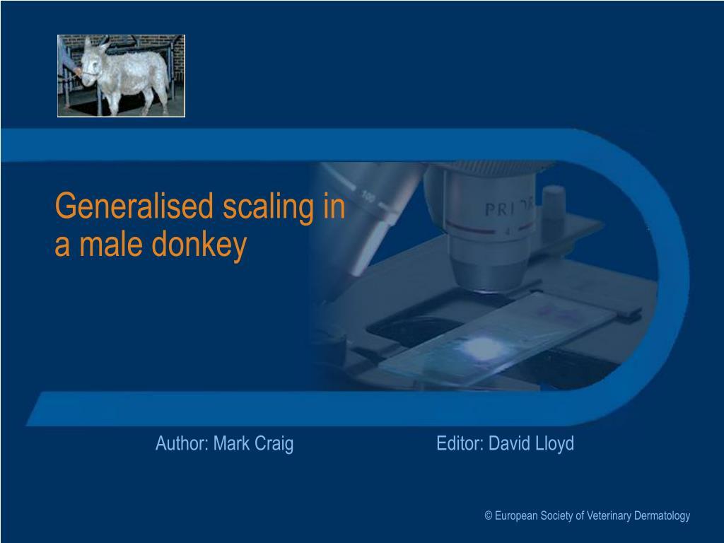 Generalised scaling in