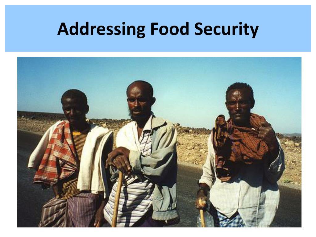 Addressing Food Security