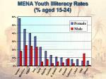 mena youth illiteracy rates aged 15 24