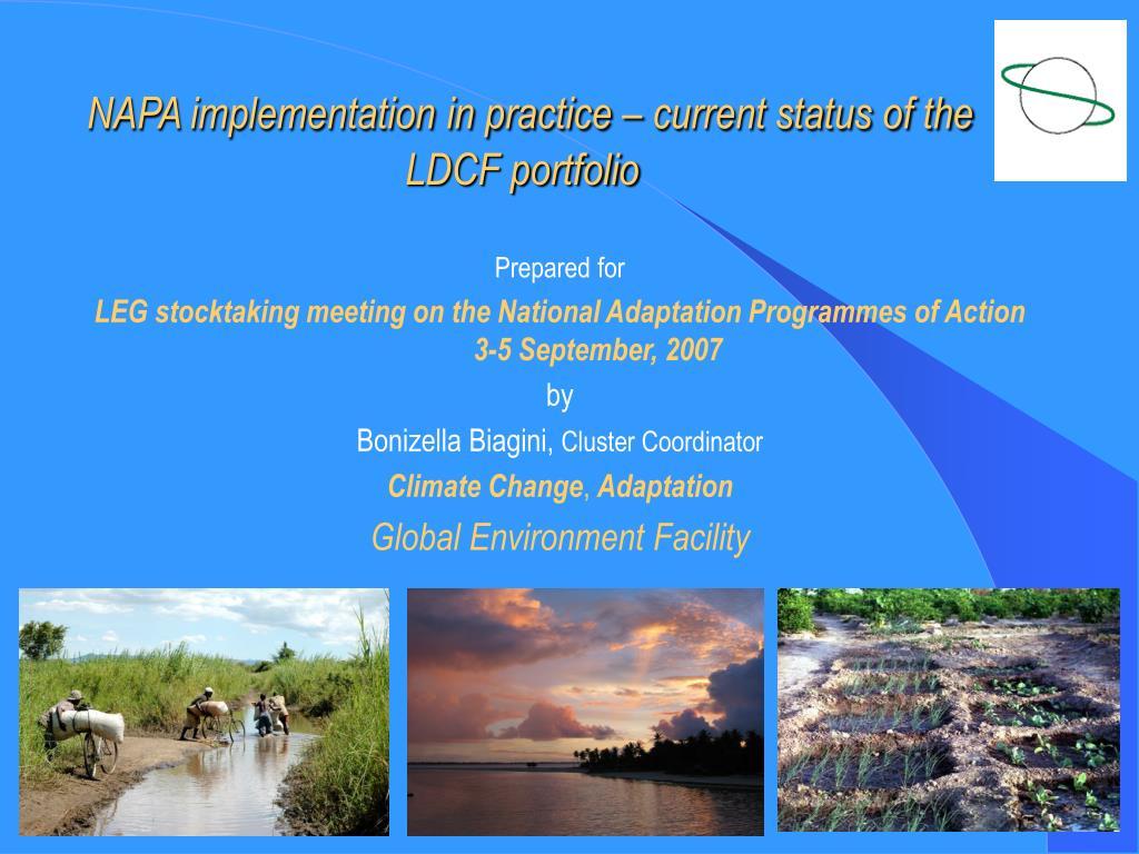 napa implementation in practice current status of the ldcf portfolio l.