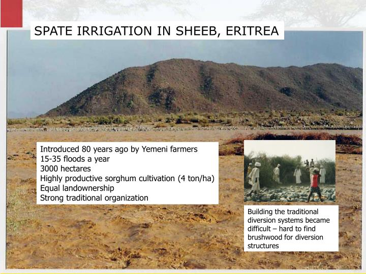 SPATE IRRIGATION IN SHEEB, ERITREA
