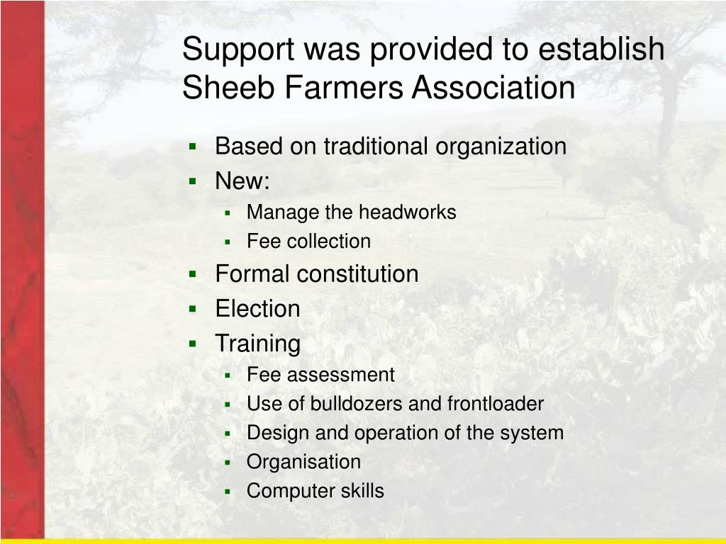 Support was provided to establish Sheeb Farmers Association