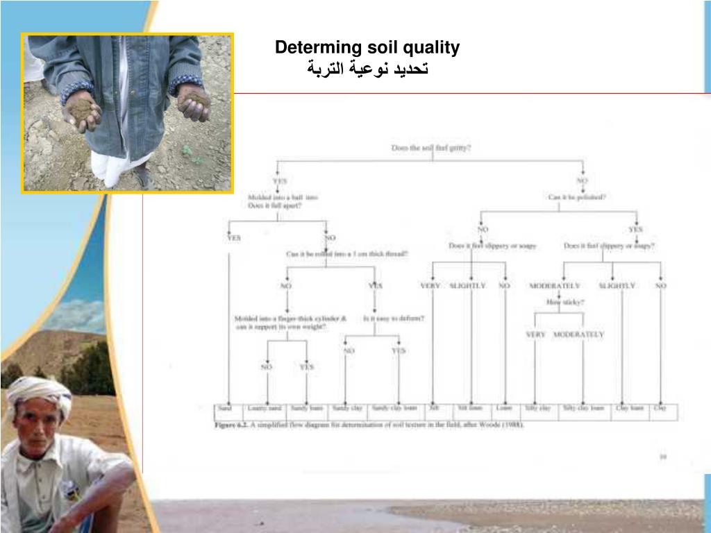 Determing soil quality