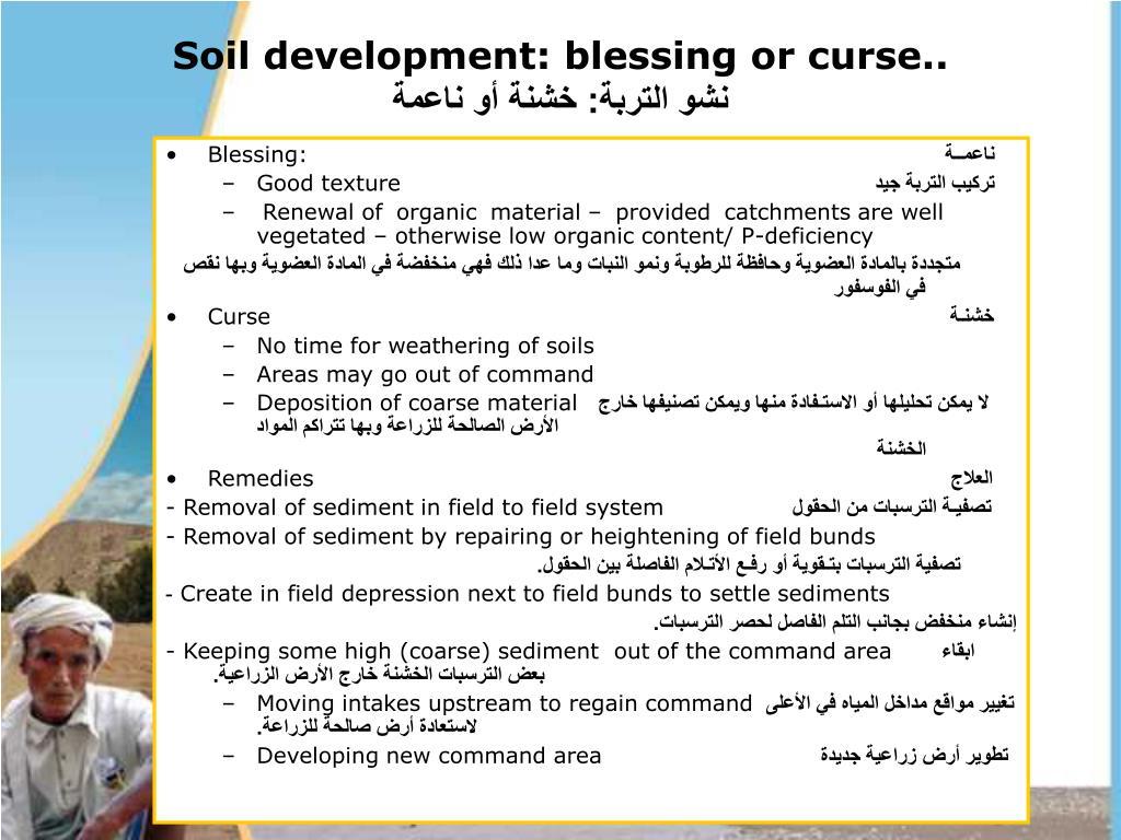 Soil development: blessing or curse..