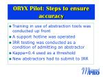 oryx pilot steps to ensure accuracy