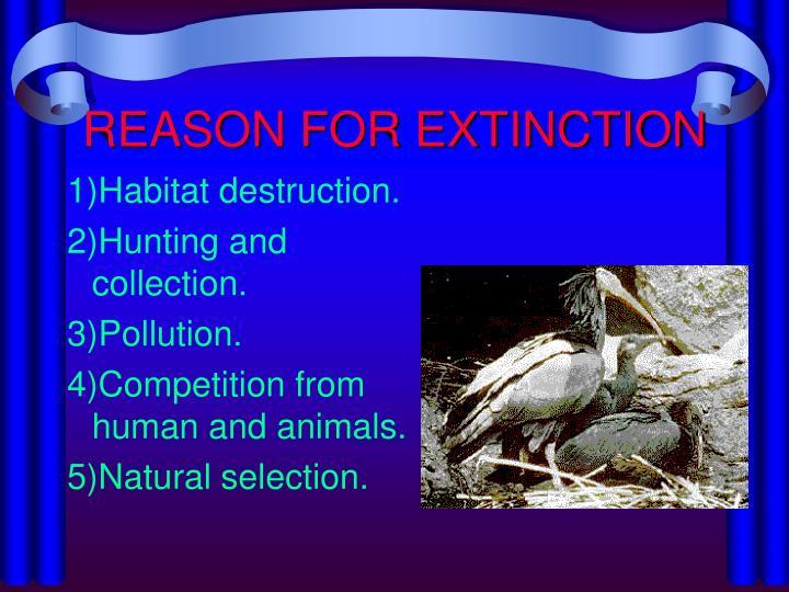 Reason for extinction