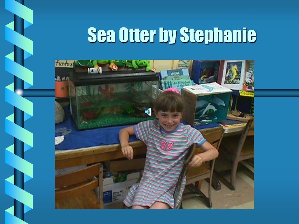 Sea Otter by Stephanie