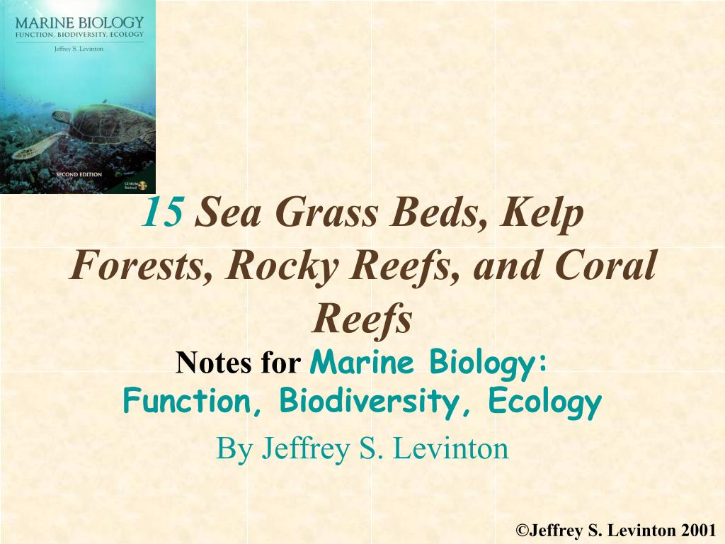 15 sea grass beds kelp forests rocky reefs and coral reefs l.