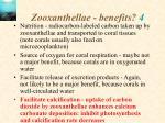 zooxanthellae benefits 4