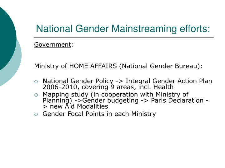 National gender mainstreaming efforts