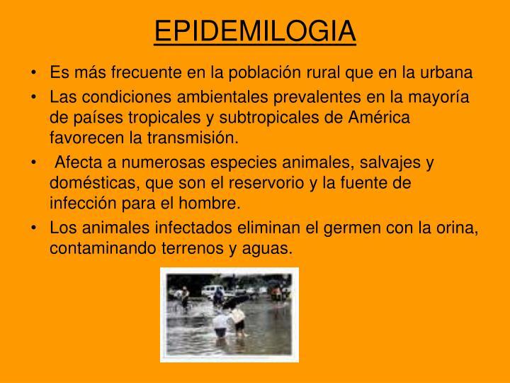 EPIDEMILOGIA