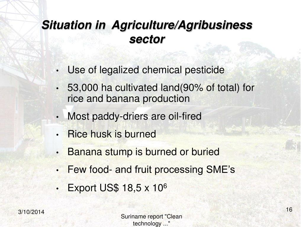 Situation in  Agriculture/Agribusiness sector