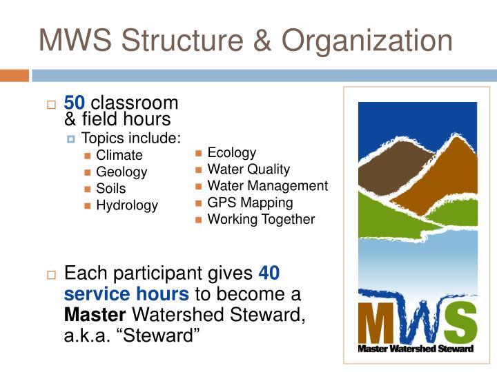 MWS Structure & Organization