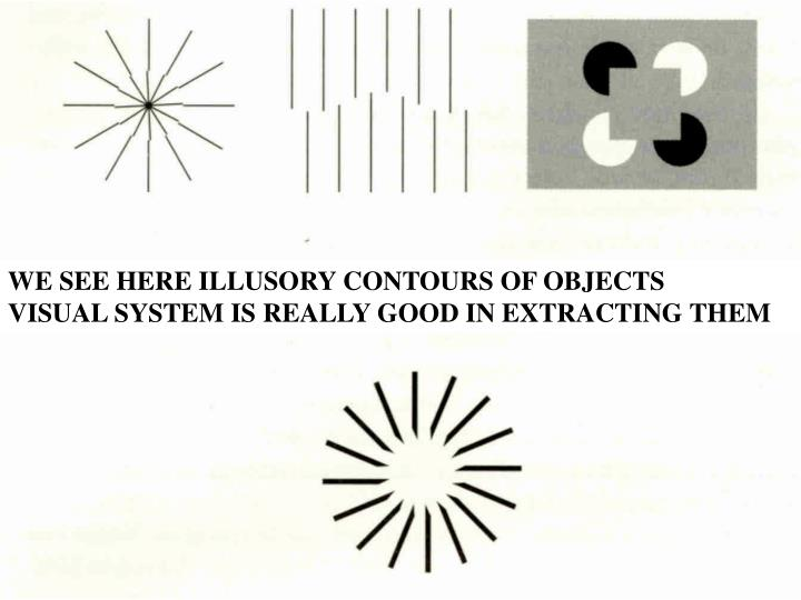 WE SEE HERE ILLUSORY CONTOURS OF OBJECTS