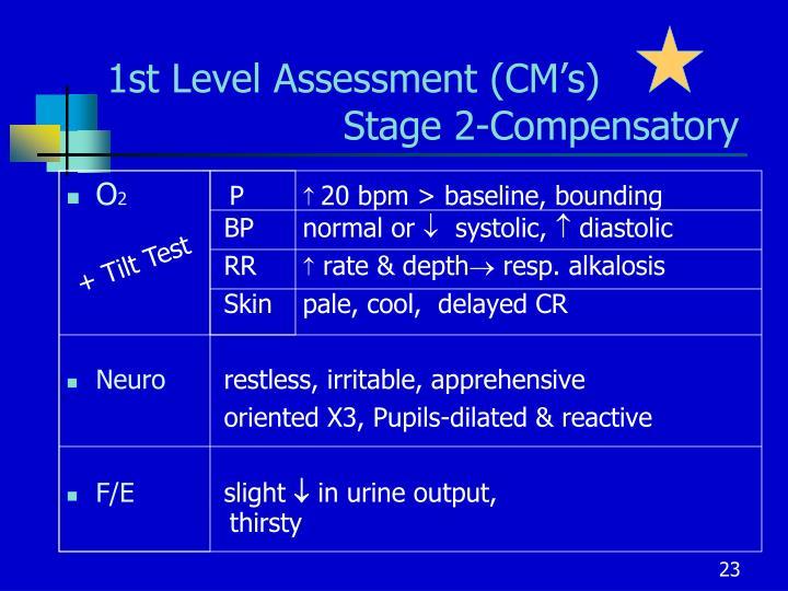 1st Level Assessment (CM's)  Stage 2-Compensatory
